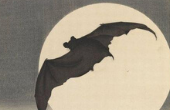 Virtual 10th Annual Celebration for the Bats - Live