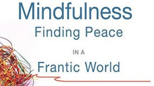10 – Week Intro to Mindfulness Program